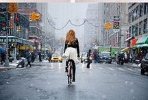 Let me Ride my Bicycle / by Briar Biddle