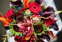 Fall Flowers / Purchase fall flowers for all your #DIYWEDDING projects through Fabulous Florals.