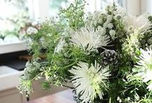 Winter Flowers / DIY flower ideas can be recreated by buying flowers at fabulousflorals.com #DIYWEDDING #DIYFLOWERS