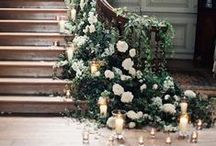 Wedding Flowers / Flowers that inspire and mesmorize