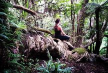 Stillwaters yoga retreat nz / Yoga retreat for intimate group of 4- natural wonderland on Kawau Island- no roads no cafés or shops- just silence !!!www.yoga.co.nz