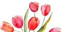 All things Spring / All things Spring #spring #springmarket #springrealestate