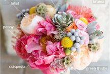 Bouquet Breakdown / Bouquet breakdown and bouquet recipes. #DIYWEDDING #DIYFLOWERS