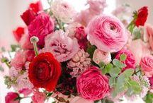 PINK Flowers / The prettiest PINK flowers ! Order wholesale DIY flowers online. #pinkflowers #diyflowers #wholesaleflowers