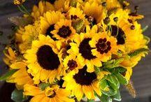 YELLOW Flowers / The prettiest YELLOW flowers ! Order wholesale DIY flowers online. www.fabulousflorals.com  #yellowflowers  #diyflowers #wholesaleflowers