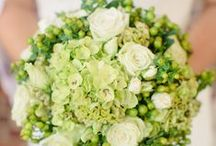 GREEN Flowers / Beautiful GREEN Flowers for your wedding or event  ! Order wholesale DIY flowers & greenery online. www.fabulousflorals.com  #greenflowers   #diyflowers #wholesaleflowers