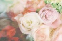 theme - botanicals