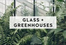 GLASS + GREENHOUSES / Open, organic, and simple are the words to describe these  places. Perfect for anyone who wants to celebrate with a view.