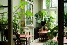greens ... / Interior, green living indoor and outdoor
