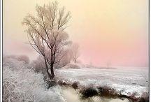 WINTER❄️WONDERS /VINTERSTEMNING / Vakre vinterglimt for en lysere mørketid❄️