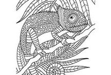 Keep Calm and Colour In / Colouring-in is both fun and helps you reduce stress, and it has taken the world by storm.   Give it a go and download one of our FREE colouring-in sheets below and start colouring! Share your work with us by posting them on our Facebook, Instagram or Pinterest pages. Remember to hashtag your work using #eckersleys when you post.  Visit us in-store or online for all the colouring tools you will need - www.eckersleys.com.au/products/art/colouring-in
