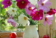 Flowers foto.
