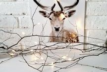 minimalistic christmas decoration / minimalistic and scandinavian inspired christmad decorating ideas for your home