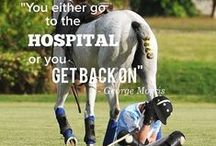 Equestrian thoughts
