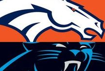 2016 Super Bowl : Denver Broncos vs. Carolina Panthers / Get some ideas for your Super Bowl Party.