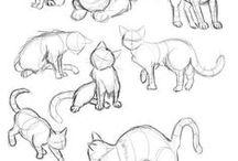 Drawing ✍