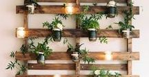Home Decor / Eco-Friendly / Home décor ideas that are natural, non-toxic and create a healthy home. Beautiful, inspiring ideas for DIY crafts and healthier items to buy to decorate your house.