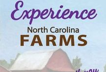 Visit NC Farms / Whether you are looking for a farm tour, corn maze, wine or cider tasting, or special event location, there is a NC farm near you that will entertain and educate you. Field trip. Agritourism.