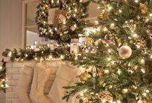 Christmas / Decor, recipes and more to celebrate Christmas!