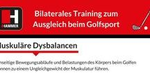Bilaterales Training zum Ausgleich beim Golfsport / Wir haben für dich die wichtigsten Informationen zu Ursachen und Vermeidung von muskulären Dysbalancen beim Golf zusammengestellt. So trainierst du richtig!  #bilaterales #trainin #golf #golfen #ausgleich #dysbalancen #muskulär #muskeltraining #fit #fitness #hammer #hammersport #ausdauer #ausdauertraining #rasen #aufbautraining #aufbau #score #golfplatz #golfball #handicap