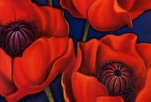 Art Reference - Poppies
