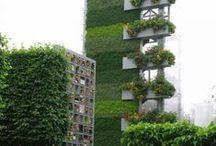 Eco Green Walls