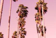 SUMMER 15 / by Kelsey Farrer