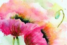 Malba – květiny