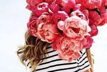: Floral Bouquets :