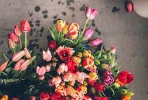 I ♥ flowers.