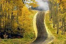 Autumn / de kleurrijke natuur