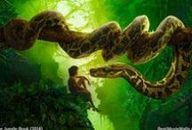Jungle Book 2016 / HD wallpapers from Disney's Jungle Book 2016