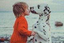 Cute/ animals