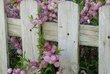 hageting/gardening