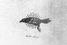 logo / brand identity