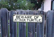 Straatborden / Op weg waarheen ...