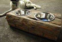 hundehus og hundliv