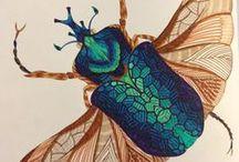 Moths an Co
