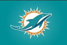 Miami Dolphins Style / Up your game with some Miami Dolphins fashion, food and fandom.