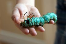 Buggo! / Insects galore