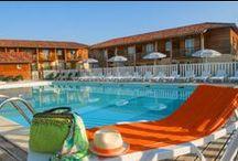 Eauze - Les Maisons du Golf d'Armagnac / Nouveauté Goelia 2013 : Découvrez une résidence au coeur du Sud Ouest composée de villas avec piscine privative et d'appartements regroupés autour d'une piscine collective. A proximité immédiate, découvrez un superbe golf 18 trous.
