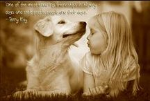 Dog Quotes / Find the greatest #quotes on #dogs.