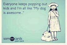 Just dogs <3 / I ❤️  my velcrodog #agithevizsla