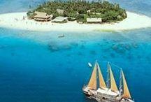 Fiji Islands / Fiji Islands, Pacific Islands, kawa drink