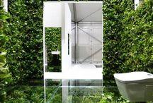 Bathrooms: Plant life