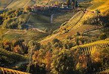 Monferrato, around us