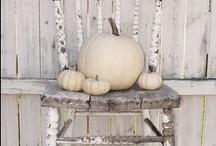 I love Fall! / by Sharyl Williams