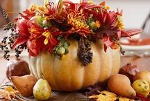 Fabulous Fall! / by Karen Raymond