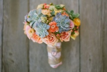 Flowers / I love ranunculuses and succulents / by Nadia Del Grande