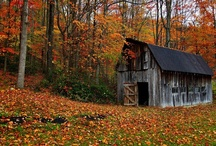 Autumn....Fall Styling